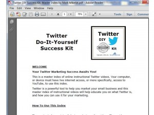 Twitter DIY Success Kit Sample2